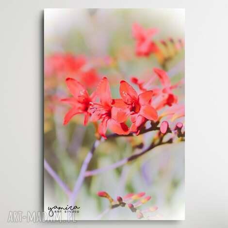 pink blossom - foto-obraz 40x60cm, kwiaty, kwiaty do salonu, obraz biura