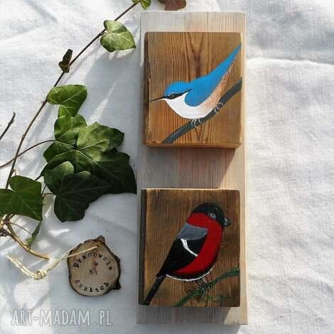 dekoracje kowalik i gil - obrazek, ptaki, gil, ptaki polskie, stare