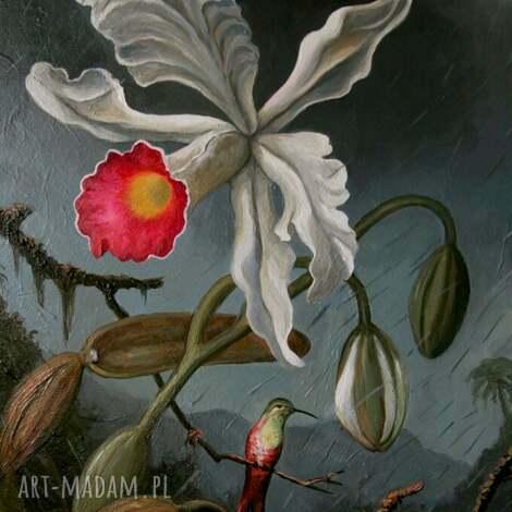 burzowa orchidea patrzy na kolibra obraz płótnie, orchidea, koliber, burza