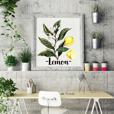 plakaty plakat lemon b2, lemon, wystrój, design, salon, kuchnia