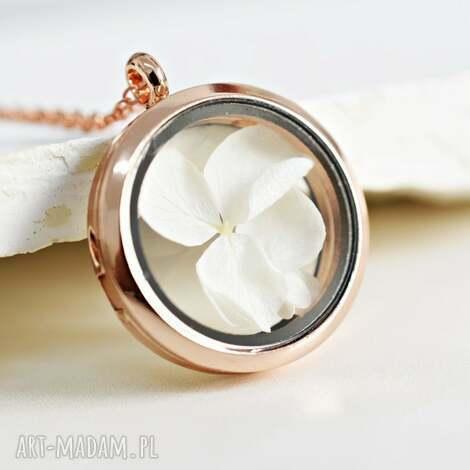 hortensja naszyjnik medalion, kwiat, hortensja, złoto, róż, natura, medalion