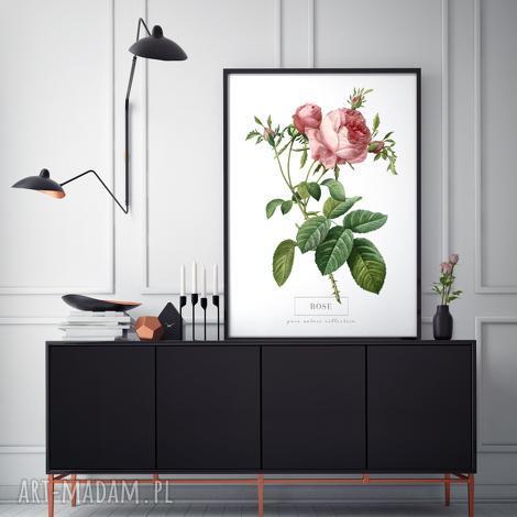 plakat b2 kwiaty, wystrój, wnętrze, prezent, salon, kuchnia, dekoracja plakaty