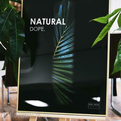 grafika w ramie natural dope, obrazy, plakaty, ilustracje, grafiti, ramie, rama dom