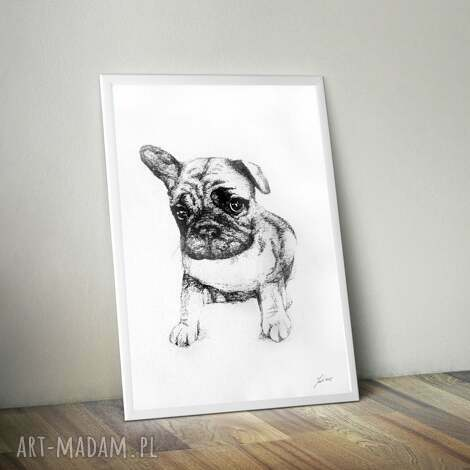 piesek bulldog francuski, piesek, bulldog, pies, rysunek