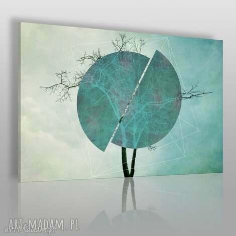 obraz na płótnie - drzewo turkus - 120x80 cm 41101 - drzewo, okrąg, koło