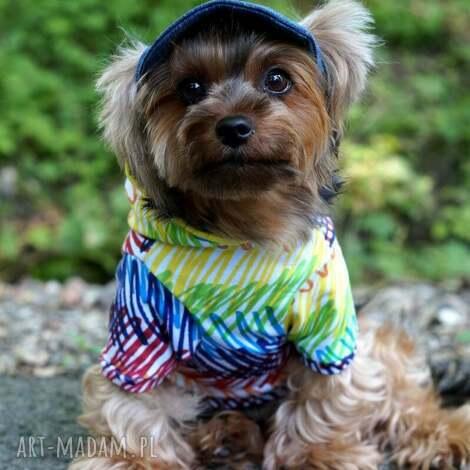 sisidogcouture ubranko dla psa, bluza, ubranie, sweter, kurtka, ubranko, pies dom