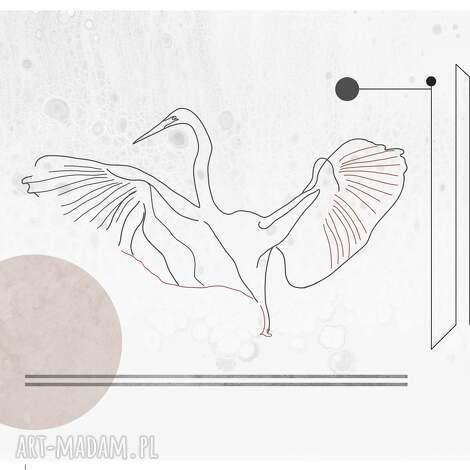 plakat czapla heron white - 50x70, czapla, ptaki