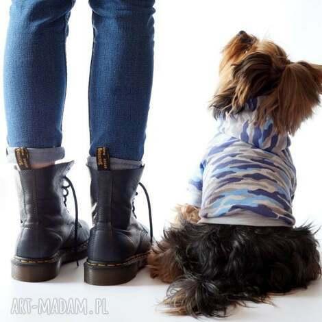 bluza dla psa ubranko ubranie yorka ratlerka na zimę