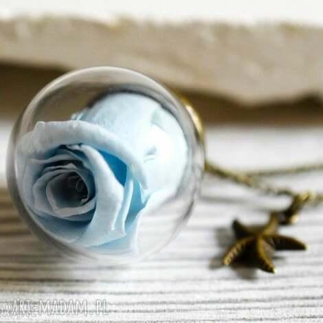 naszyjnik wieczne róże - wieczna miłość, wiosiorek, róża, naturalna, susz, natura