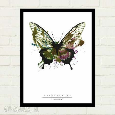 plakaty butterfly painted plakat 50x70, plakat