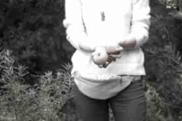 Nerka mini - wierzba morris nerki joanka z kwiaty, morris
