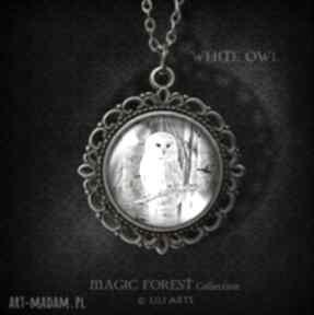 Medalion, naszyjnik - sowa romantyczny, antyczny brąz naszyjniki