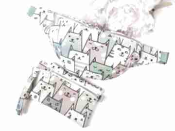 Saszetka kolorowe koty kosmetyczka kosmetyczki luci and love