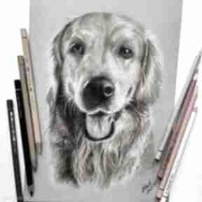 Rysunek kredkami pies studio d pies, milosnicy psow, co kupic