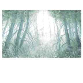 Poranek w lesie elisabeth pejzaż-leśny, zielony, do salonu