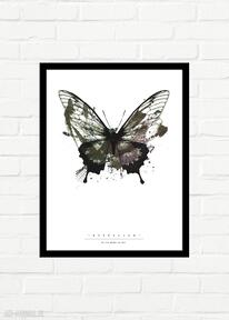 Butterfly painted plakat 30x40 plakaty gau home minimalizm