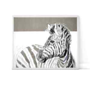 Plakat 50x70 cm - zebra plakaty creo plakat, wydruk, zebra