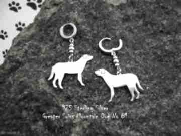 Szwajcarski pies pasterski srebro próby 925 kolczyki nr 81