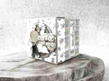 Exploding box dla mola książkowego scrapbooking kartki iride