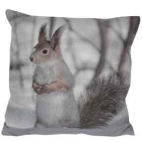 Prezenty na święta. Poduszka dekoracyjna wiewiórka poduszki