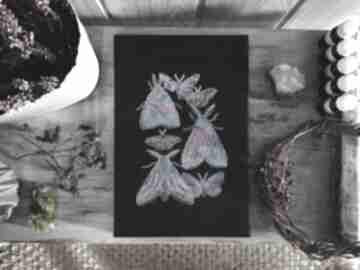 dekoracje! obraz obrazek-haftowany ćmy czarny-obraz obraz-z-ćmami