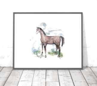 30x40 plakat z konikiem, koń grafika, ilustracja koniem