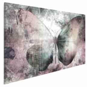 Obraz na płótnie - motyl kolorowy 120x80 cm 59801 vaku dsgn