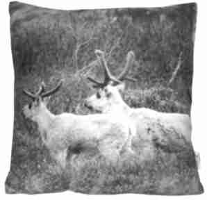 Prezenty na święta? Poduszka dekoracyjna reindeer ii poduszki