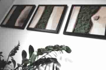 WoodCraft. Obraz tryptyk z drewna dębowego i mech w ramie