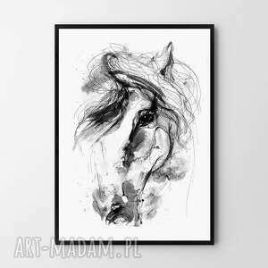 plakat obraz koń 50x70 cm