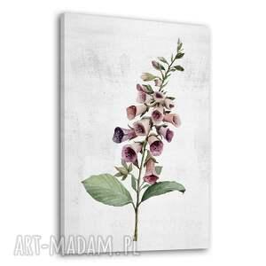 obraz drukowany na płótnie kwiat naparstnica 70x100cm, różowy