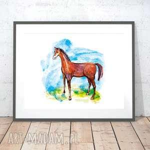 21x30 koń plakat dla dzieci, konik ilustracja, obrazek do pokoju dziewczynki, plakat