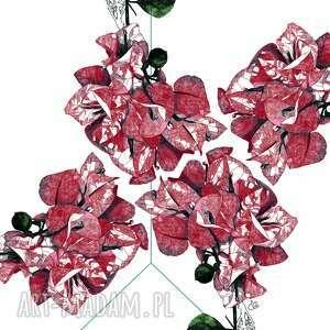 plakat - rysunek kwiatu bugenwilli, plakat, rysunek, grafika, ilustracja, prezent