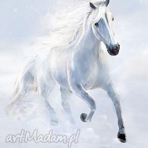 obraz - biały koń 2 płótno malowany