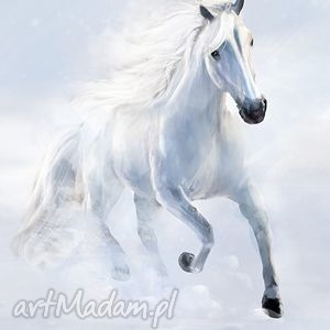 obraz - biały koń 2 płótno malowany, obraz, płótno, koń, grafika