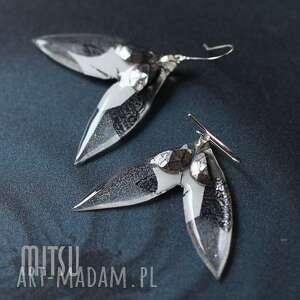 biały motyl, motyle, białe, abstrakt, duże, lato, unikalny
