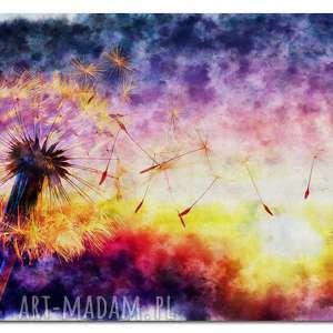 obraz xxl dmuchawce 8 kolorowe -120x70cm na płótnie kwiaty kulki