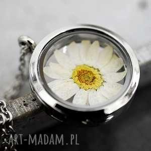 prawdziwa margaretka medalion, margareta, natura, srebro, kwiat, eko