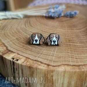 prezenty na święta, kolczyki beagle, sztyfty, drewno dębowe, pies, stal