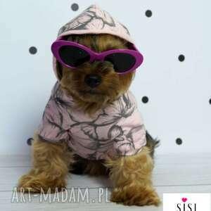 bluza z kapturem dla psa pieska ubranko ubranka małych psów