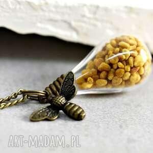 prawdziwy pszczeli pyłek brązowy łańcuszek - pszczoła, pyłek