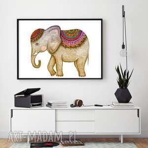 unikalne, słoń 60x90cm, słoń, słonik, indyjski, plakat, obraz