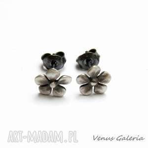 Fiołki szare - kolczyki srebrne, srebro, kolczyki, oksyda, kwiatki, szare, biżuteria