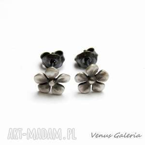 Fiołki szare - kolczyki srebrne venus galeria srebro, kolczyki