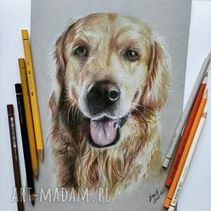 wyjątkowy prezent, rysunek kredkami pies, milosnicy psow, co kupic