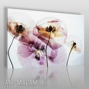 obraz na płótnie - kwiaty transparentny - 120x80 cm 61301 - kwiaty
