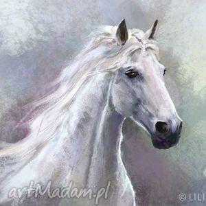 Obraz Biały koń - płótno, obraz, koń, konik, malowany, konie