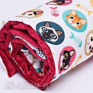 Kołderka minky kotki, kocyk, kołderka, minky, pościel, koty
