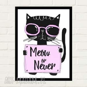 ręcznie wykonane plakaty meow or never plakat 30x40