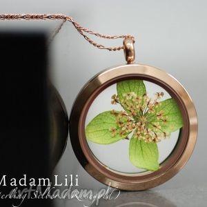 Prezent Kwiat kopru i liść, 925 srebro pokryte różowym złotem, srebro, koper, natura